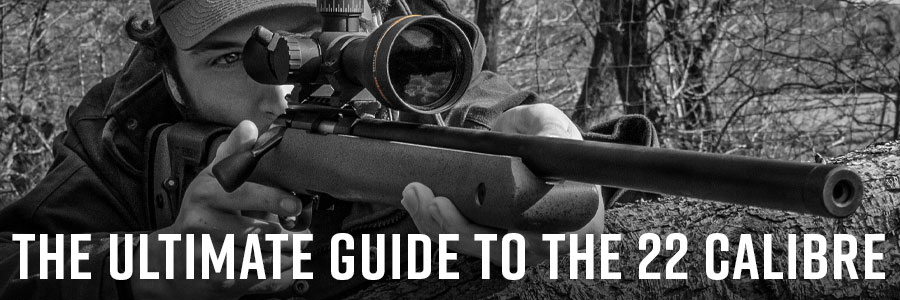 Ultimate Guide to the 22 Calibre